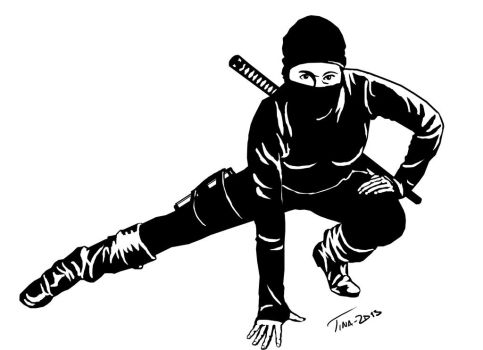 Ninja by Asynja
