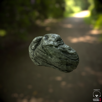 A Rock by newdeal666