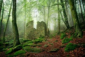 Remains from the Past by FlorentCourty