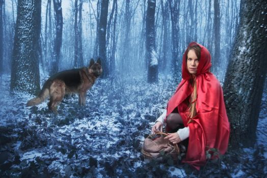 Red Riding Hood by Dzodan