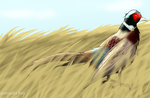 Pheasant Fields by Radioactive-Wolf