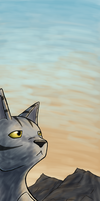 Longtail Bookmark by brandy212