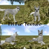 FH-Fur-Texture by me and Kiera || 1 by AashyTheWolf