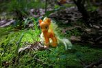 Apple Jack in a Mossy Glen 1 by AquilaTEagle
