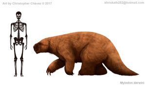 Mylodon darwini was a giant sloth related to the m by Christopher252