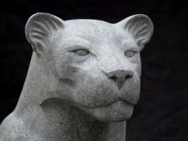 Panther by tecciztecatl