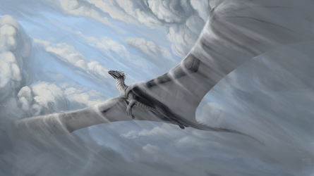 Soaring through clouds by Keltaan