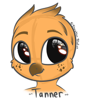 Flat Color Headshot Sketch Commission - Tanner by ShayNoxStudios