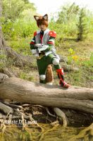 Fox Mccloud - Star Fox Assault - 2 by briste