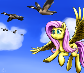 ATG IV Day 13 - Traveling with geese by BenjiK