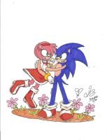 Sonic and Amy by Project-Stridokou
