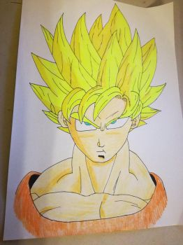Goku by OPCat