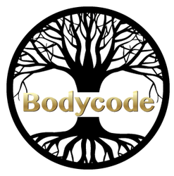 Bodycode Logo by allanbak