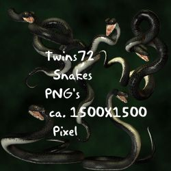 Stock Black Snakes by Twins72