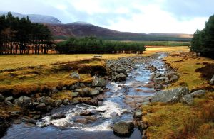 A little stream in Scotland by jchanders