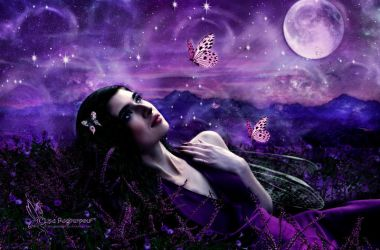 Shades of Purple by FairieGoodMother