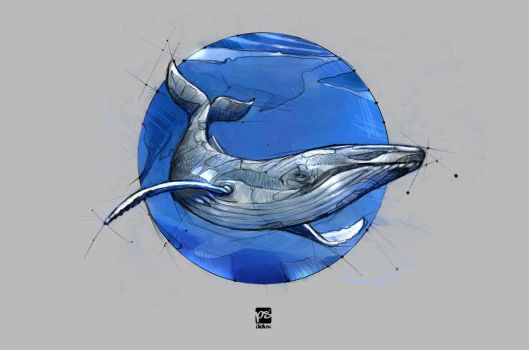 20171223 Whale Psdelux by psdeluxe