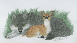 The Wolf and the Fawn by NightTracker