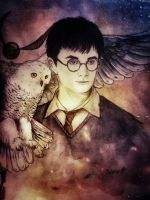 harry potter by Galinaxsim