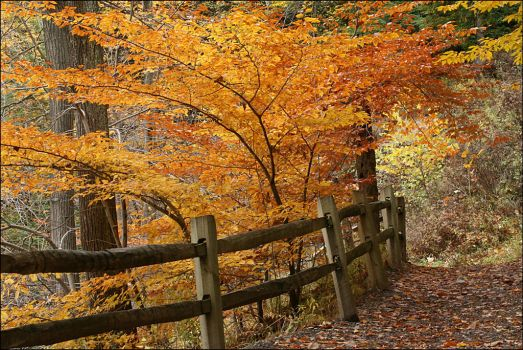 Upper Falls path - Oct 2009 by pearwood