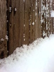 Winter fence by Joannyta