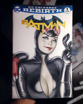 Catwoman sketch cover by WarrenLouw