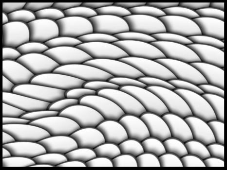 Dragon Scales by JayGarrick