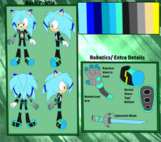 Ref Sheet: Kinetic Hedgie (Added Biography) by TheSparklyMisfit