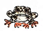 I cant remember the name of this frog by Naoru