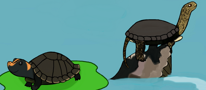 Happy World Turtle Day 2018 by Moonstone27