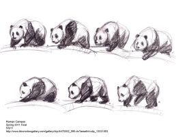 Panda motion study by mell0w-m1nded