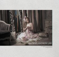 Michael Andrew Law Advertising Campaign 3 by michaelandrewlaw