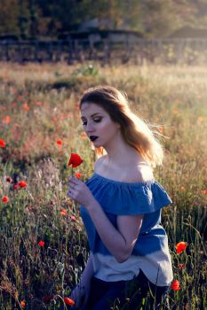Queen of poppies by bulleblue