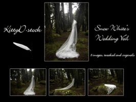 Snow White's Wedding Veil I by Kittyd-Stock