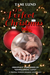 Perfect Christmas Ebook Cover by camarilladee