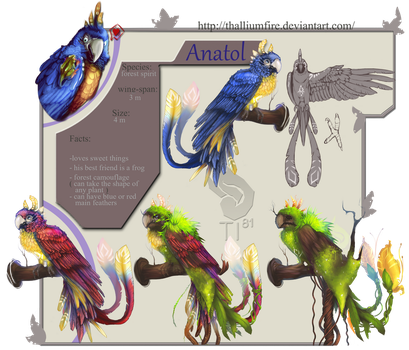 Anatol  Reference Sheet by Sternen-Gaukler