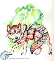 Introducing the Mexican Gray Wolf by TaksArt