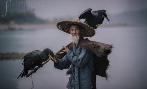Li River Fisherman by R3ality66