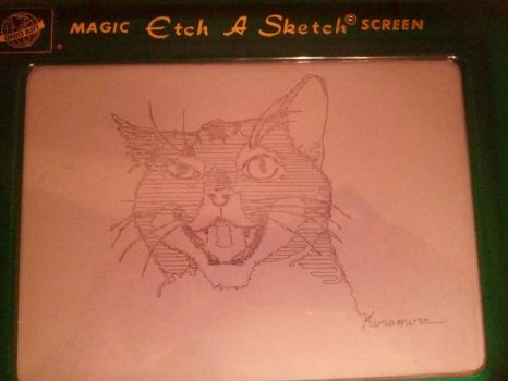 Etch A Sketch Cat by theangrybuddha