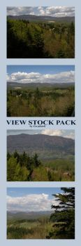 BB22 - View Stock Pack by Gwathiell