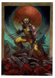 Wolverine private commission by LucaStrati