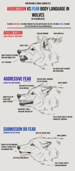 Agression vs Fear in Wolves cheat sheet: Snarls by KFCemployee