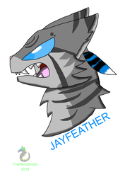 Jayfeather ( Warriors Cats ) by ToaHeroStudio