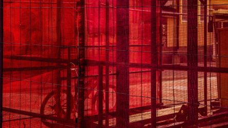 verticality one: red by ntone