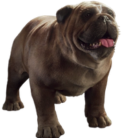 Inhuman's Lockjaw - Transparent Background! by Camo-Flauge