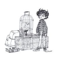Harry Potter And Owl by Shricka