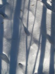 parallel lines on snow by synesthesea