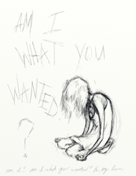 Am I What You Wanted? by mashalevene