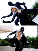 The Cat and the Spider by yayacosplay