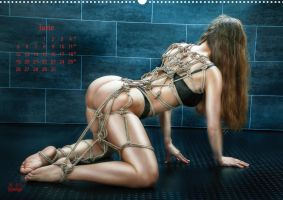 Beauty of Rope II - Fine Art of Bondage - Calendar by Model-Space